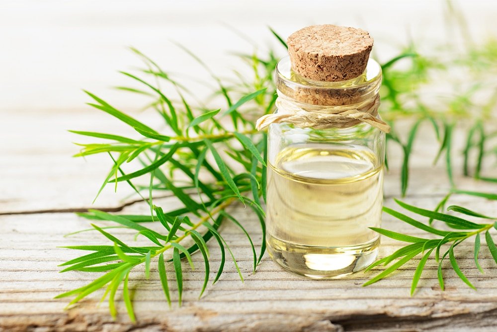 What is the best eyelash growth serum